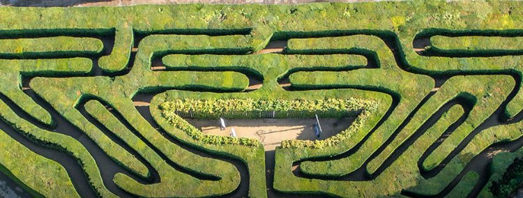 Hampton Court Maze - London date ideas
