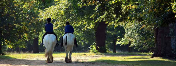 Horse riding - London date ideas
