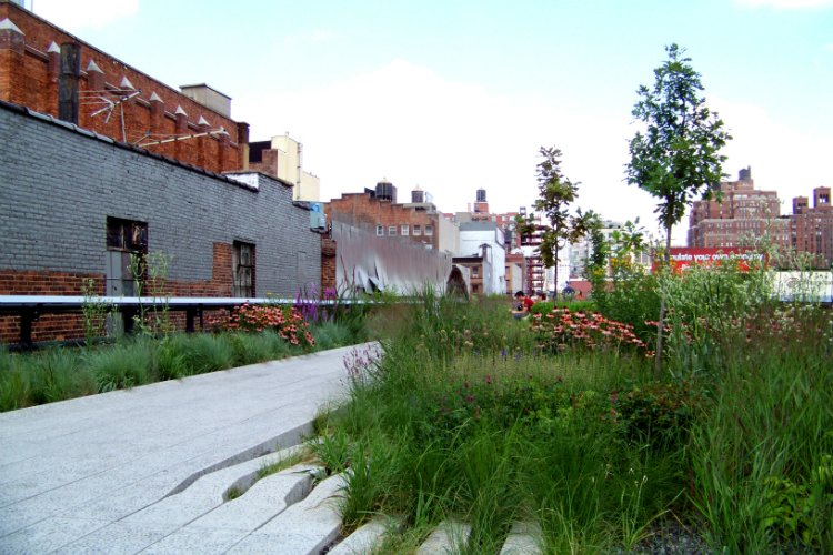 Highline things to do in New York