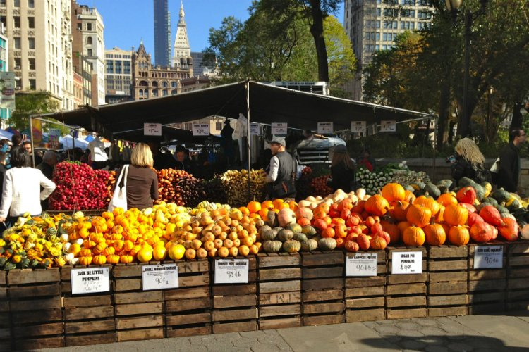 Union Square Greenmarket things to do in New York