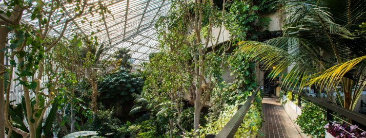 secret gardens London