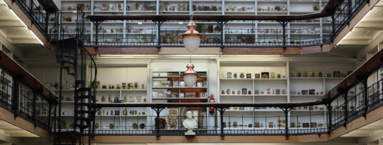 Barts - unusual museums in London