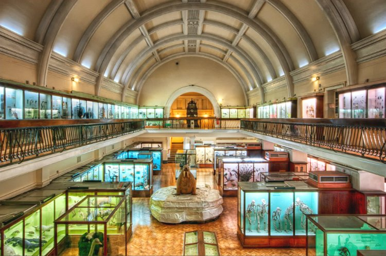 Unusual Museums - quirky things to do in London