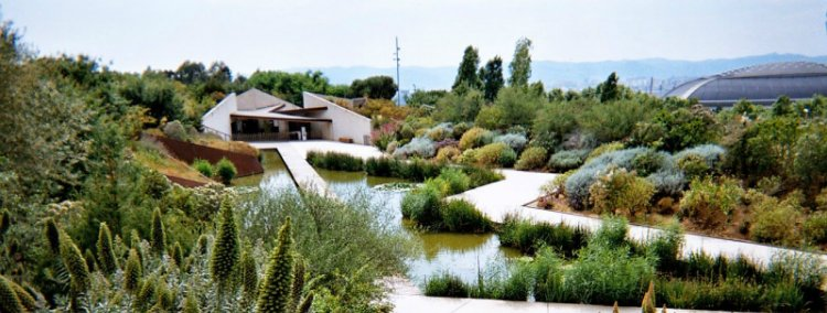 Jardi Botanic - things to do in Barcelona