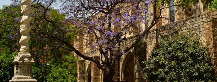 Jardins de Rubio i Lluch - things to do in Barcelona