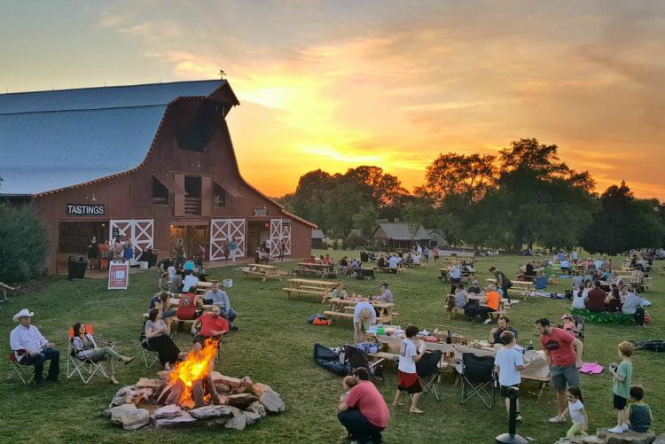 Arrington Vineyard - things to do in Nashville
