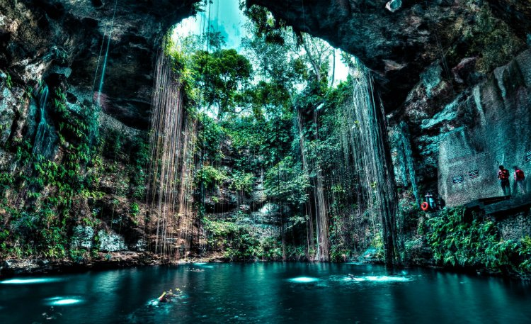 Cenote - guide to Tulum