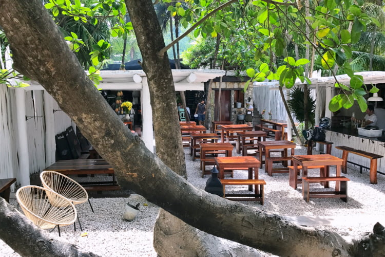 Hartwood - insiders guide to Tulum