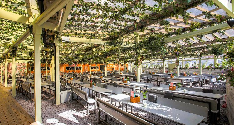 Pergola Paddington rooftop bar London