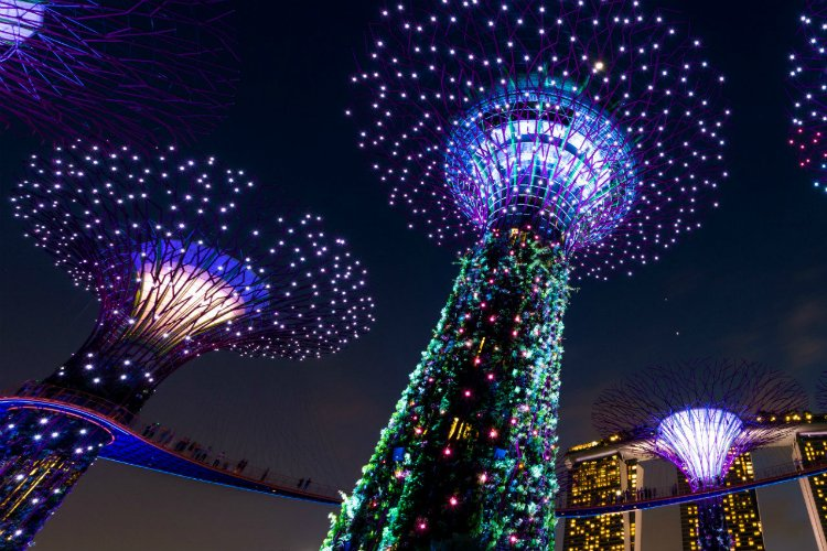Best things to do in Singapore - Singapore city guide