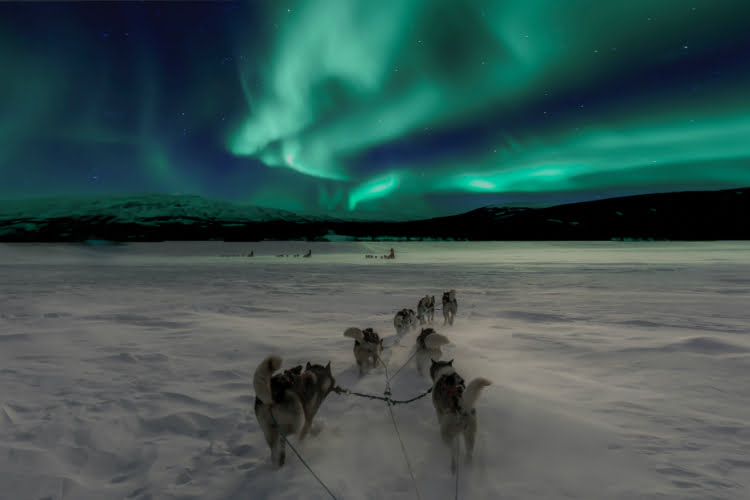 Northern Lights - adventure holidays for the brave