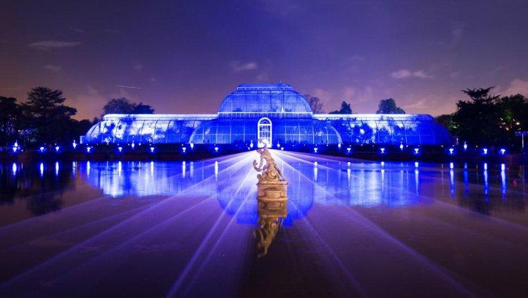 Kew Gardens Christmas Lights 2018