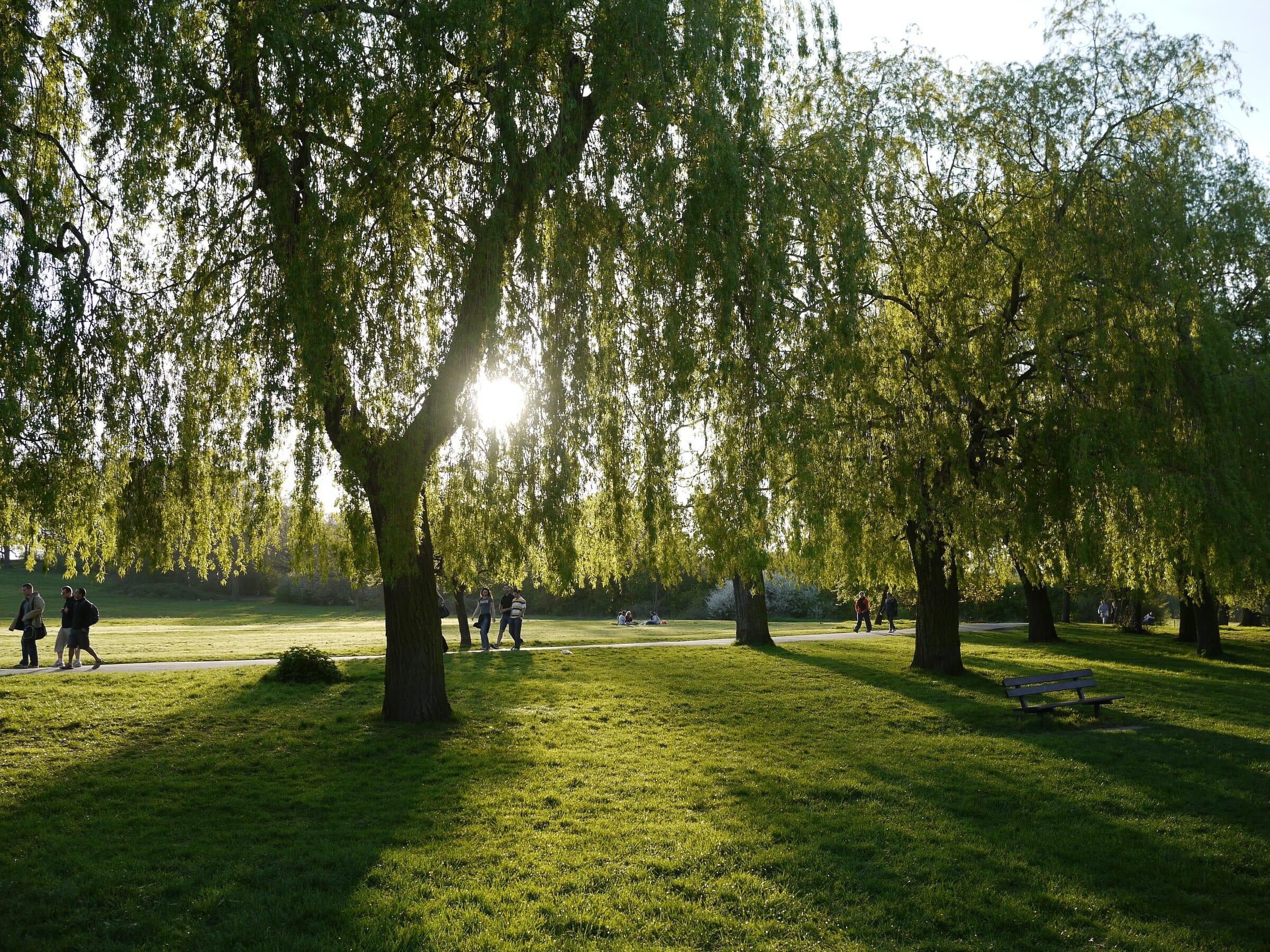 hampstead heath london date spots