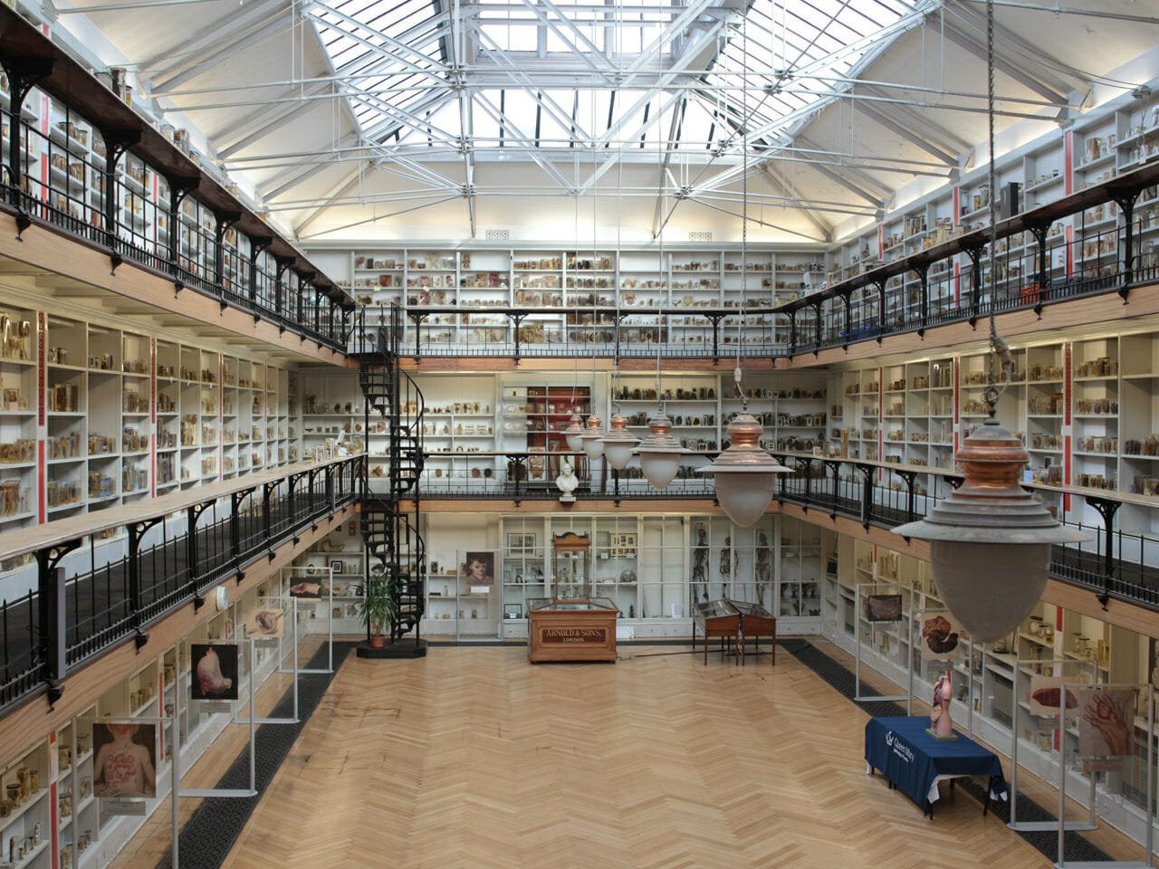 Barts Pathology Museum quirky Valentine's Day