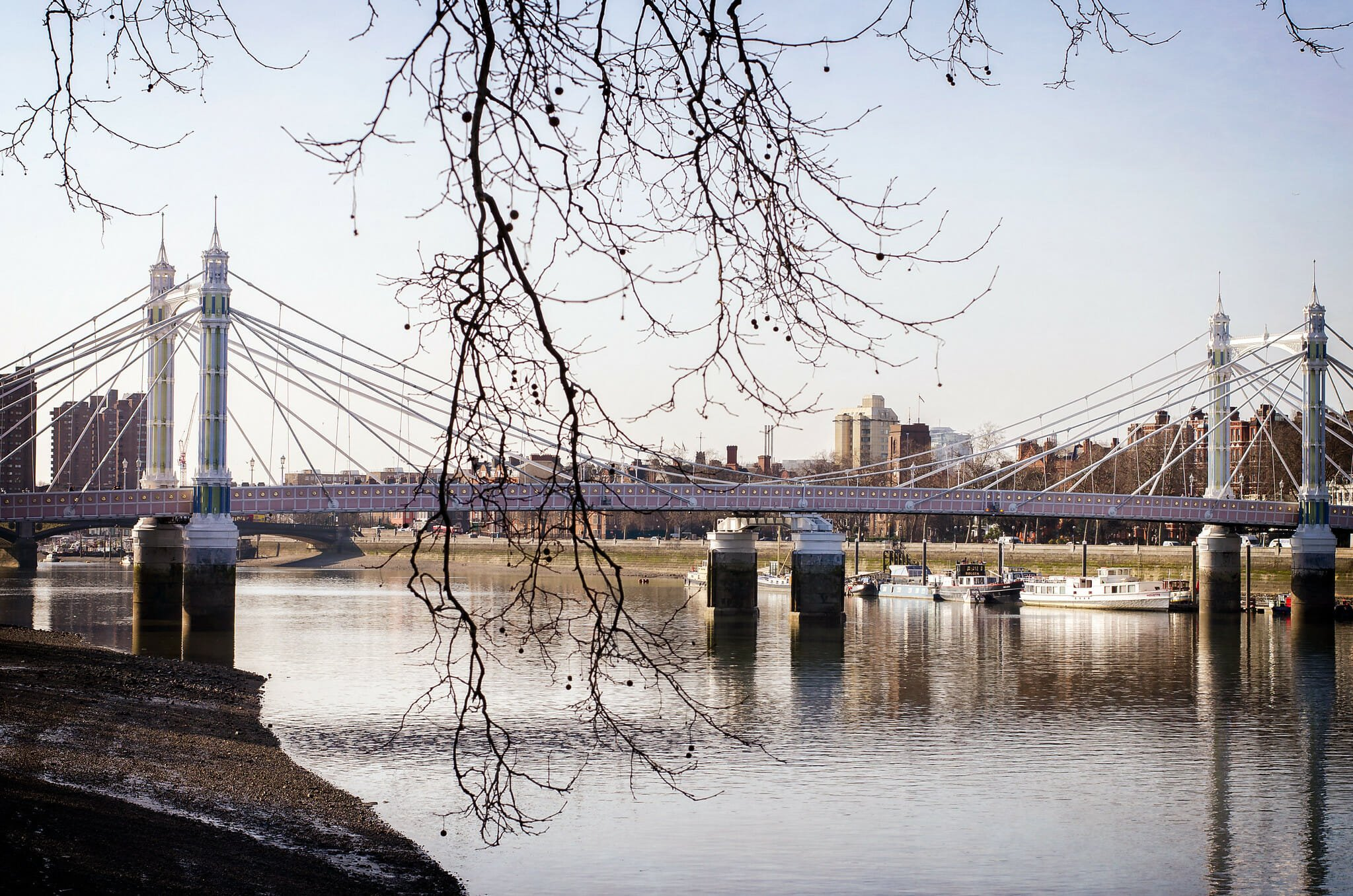 albert bridge chelsea
